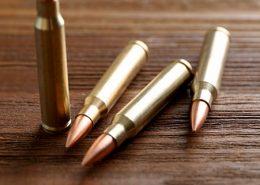 22 קליעים על שני כלי רכב: פרטים חדשים מהירי בבסיס השריון